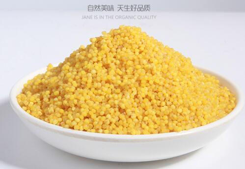 赤峰小米(CFXM)